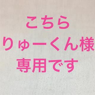 りゅーくん様専用 タトゥーシールセット(その他)