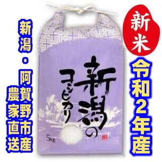 新米・令和2年産新潟コシヒカリ 白米5kg×1袋★農家直送★色彩選別済20