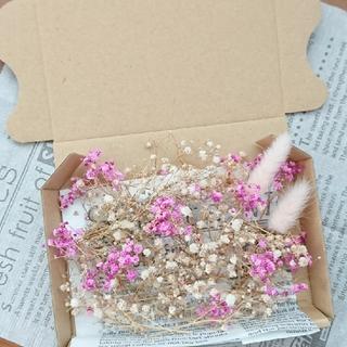 ドライフラワー 花材 ピンク(ドライフラワー)