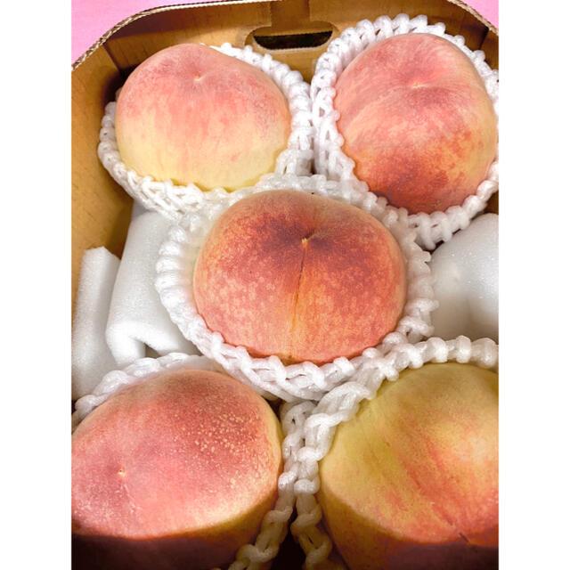 お試しあら川の桃 食品/飲料/酒の食品(フルーツ)の商品写真