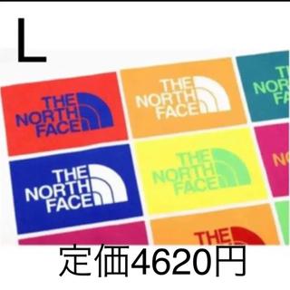 THE NORTH FACE - 【未開封新品】ノースフェイス Tシャツ カラフル グラフィックロゴ 白色