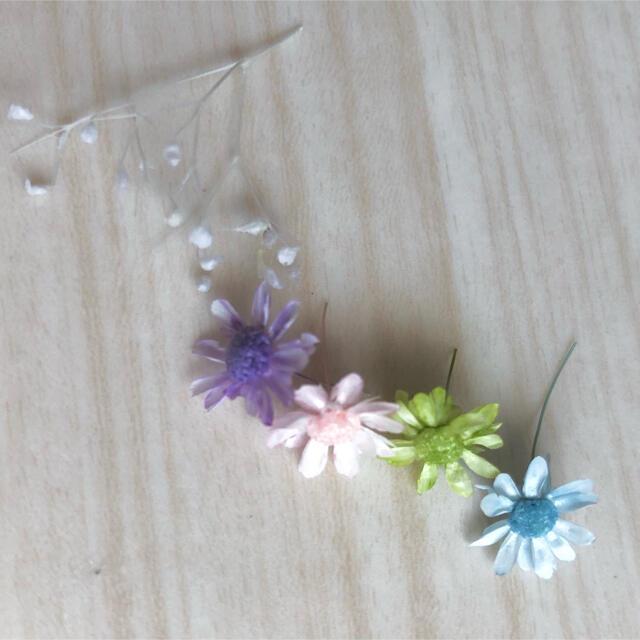 【お試し】スターフラワー・ミニ&かすみ草(白) ハンドメイドのフラワー/ガーデン(ドライフラワー)の商品写真