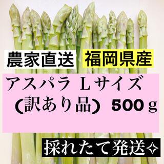 アスパラLサイズ(訳あり品)(野菜)