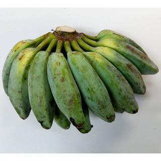 沖縄本島南部産 南洋バナナ(プランテンバナナ)1㎏(フルーツ)