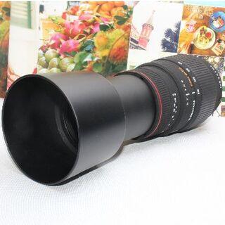 シグマ(SIGMA)の❤️ど迫力の超望遠レンズ❤️シグマ 70-300mm ペンタックス用❤️(デジタル一眼)