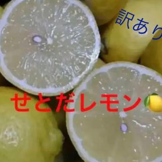 せとだレモン 2.5キロ(フルーツ)