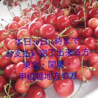 さくらんぼ 佐藤錦(フルーツ)