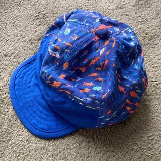 パタゴニア(patagonia)のパタゴニア キャップ 帽子 キッズ 水陸両用 ベビー 12M (帽子)