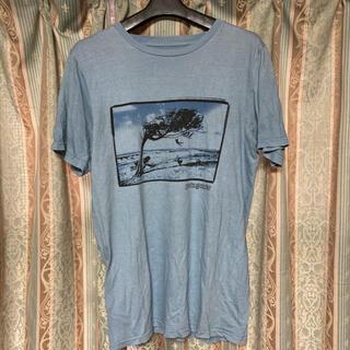 パタゴニア(patagonia)のパタゴニアTシャツ(Tシャツ/カットソー(半袖/袖なし))