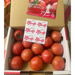 アメーラ トマト 約1kg   高糖度フルーツトマト(フルーツ)
