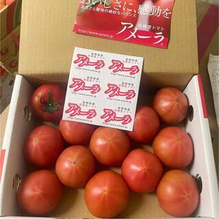 トマト アメーラ 約1kg   高糖度フルーツトマト(フルーツ)