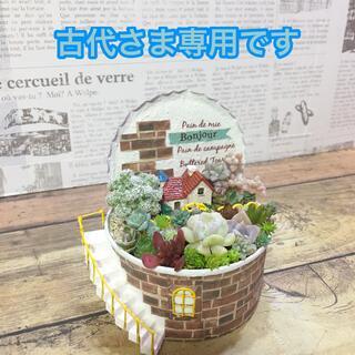 多肉植物の寄せ植え リメ缶妖精の庭   ピック10本セット(その他)