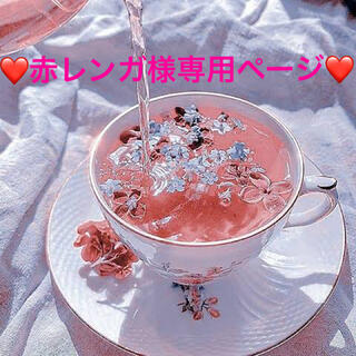 ❤︎赤レンガ様専用ページ❤︎(ウェア)