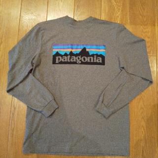 patagonia - パタゴニア レスポンシビリティー Tシャツ