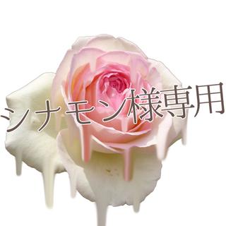 アンジェリックプリティー(Angelic Pretty)のAngelic Pretty(ひざ丈ワンピース)