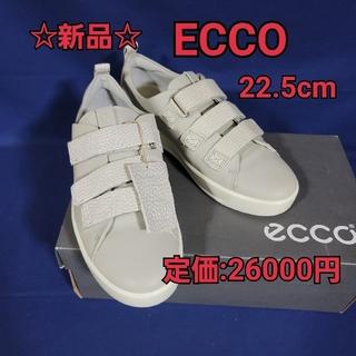 エコー(ECHO)の☆新品☆エコー ECCO 牛革スニーカー 22.5cm(スニーカー)