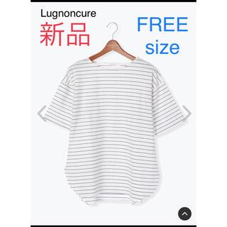 テチチ(Techichi)の【新品】ボーダー ボートネック プルオーバー カットソー Tシャツ(Tシャツ(半袖/袖なし))