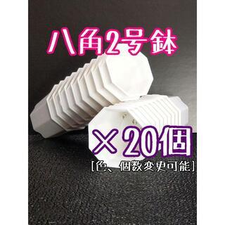 八角鉢 ◎20個◎ ホワイト 2号 2寸 プラ鉢 ミニ鉢 シャトル(プランター)