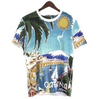 DOLCE&GABBANA - ドルチェ&ガッバーナ CATANIA Tシャツ 半袖 トロピカル 青系 48
