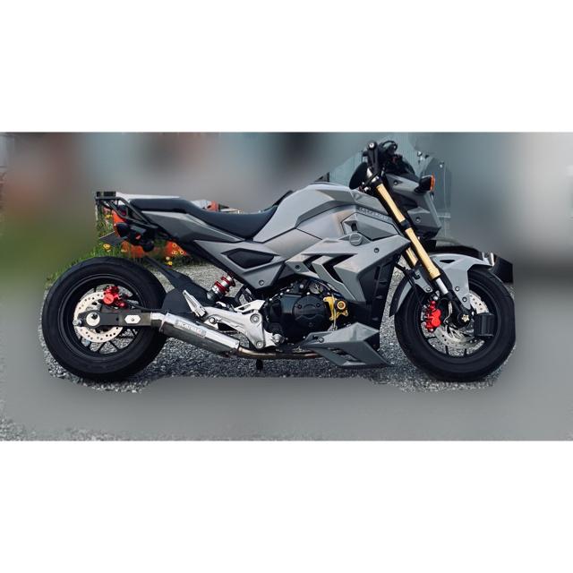 ホンダ(ホンダ)のグロム ロンスイカスタム 値下げ 自動車/バイクのバイク(車体)の商品写真