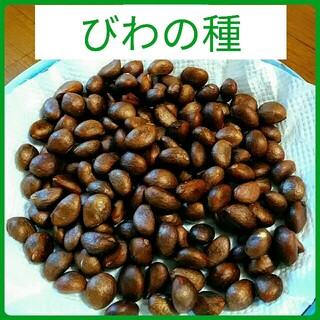 びわの種 250g以上(フルーツ)