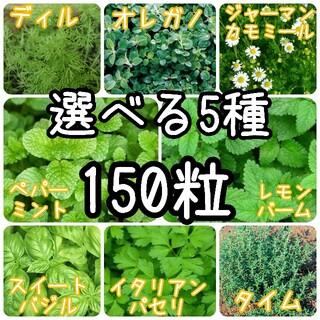 【ハーブの種】選べる5種 150粒 種子(野菜)