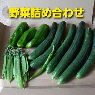 野菜詰め合わせ☆ハウス栽培☆(野菜)