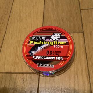 フロロ0.8号 フロロカーボンライン100% 0.8号 100m 道糸 ハリス(釣り糸/ライン)