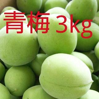 朝採れ 青梅(3kg)(フルーツ)
