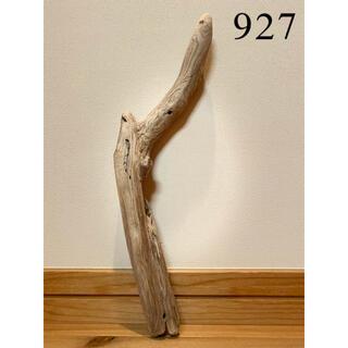 流木【927】(置物)