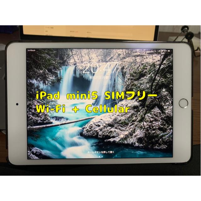 Apple(アップル)の[本日中のみ値下げ価格]iPad mini5 SIMフリー アップルストア購入 スマホ/家電/カメラのPC/タブレット(タブレット)の商品写真