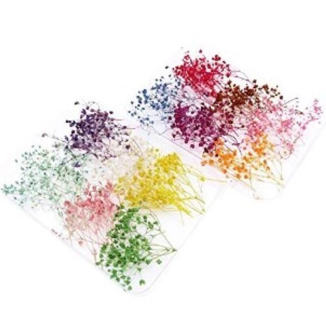 ▲即日発送▲ 12色 かすみ草 ドライフラワー 3~5cm セット ハンドメイドのフラワー/ガーデン(ドライフラワー)の商品写真