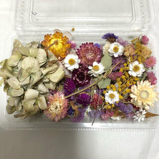 花材詰め合わせ②(ドライフラワー)