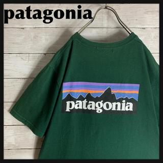 patagonia - 【希少カラー】古着 パタゴニア patagonia 半袖 Tシャツ 両面プリント