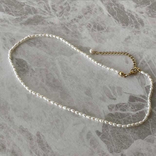 Ameri VINTAGE(アメリヴィンテージ)の淡水パール ライスパール バロックパール パール ネックレス チョーカー レディースのアクセサリー(ネックレス)の商品写真