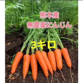 熊本産無農薬にんじん3キロ