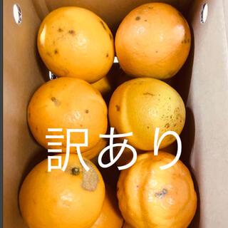 訳あり 小箱 LL 2kg 国産バレンシアオレンジ お試し 有田みかん和歌山県産(フルーツ)