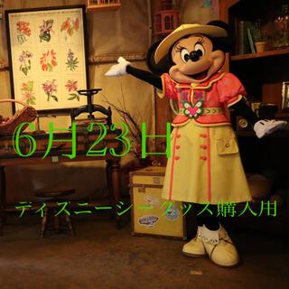 Disney - 6月23日ディズニーシー入園済チケット