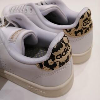 adidas - adidasアディダスヒョウ柄 新品未使用品❗ 24cm