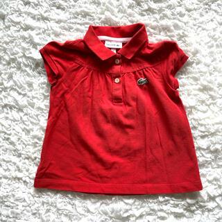ラコステ(LACOSTE)のLACOSTE 104センチ キッズポロシャツ(Tシャツ/カットソー)