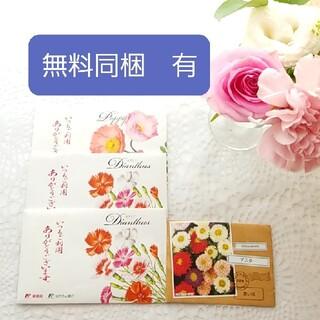 お花の種 4袋 (3種類)セット(その他)