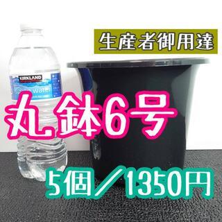 ◎5個◎ 丸鉢 6号 / 6寸 / 18cm プラ鉢 黒 ブラック(プランター)