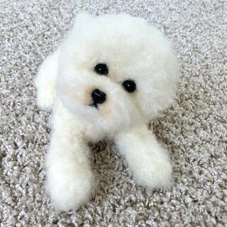 羊毛フェルト ビションフリーゼ 犬 トイプードル アフロ(ぬいぐるみ)