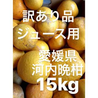 訳あり品 愛媛県 宇和ゴールド 河内晩柑 ジュース用 15kg(フルーツ)
