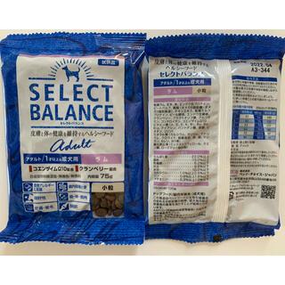 セレクト(SELECT)のきゃずま様専用 セレクトアダルトラム75g✖︎20袋(ペットフード)