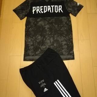 adidas - 新品 160 アディダス セットアップ 半袖 Tシャツ ハーフパンツ   上下