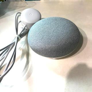 Google - Google Next Mini