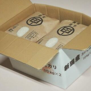 令和2年度産 新潟こしひかり 20kg(5kg×4袋) 特別栽培米(米/穀物)