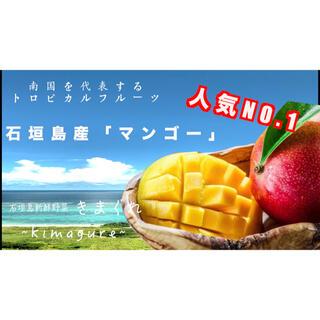 石垣島産「マンゴー」1kg(フルーツ)