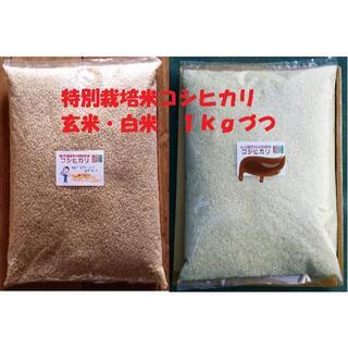 ★新米★[玄米と白米]特別栽培米コシヒカリ1kgづつセット有機肥料減農薬栽培(米/穀物)